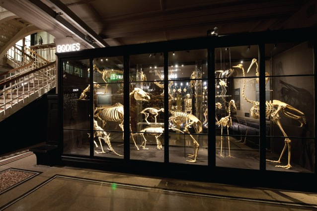 Muzeum wManchesterze